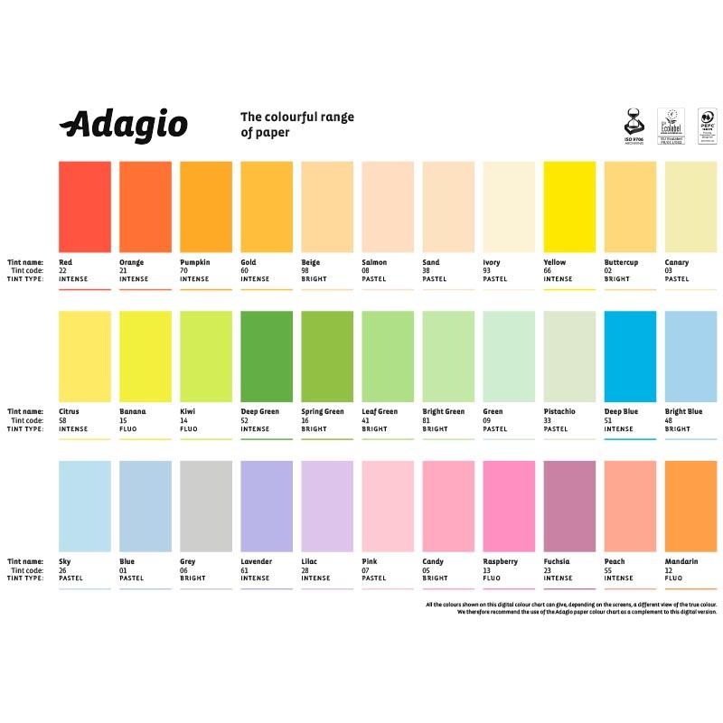 https://bo.jquelhas.pt//FileUploads/produtos/escritorio-e-papelaria/papel-de-escritorio-e-etiquetas/papel-fotocopia-de-cor/adagio/adagio1.jpg